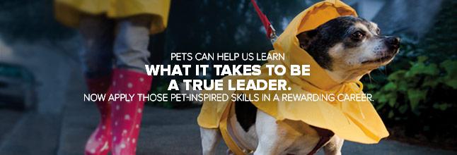 Petsmart Annualreports