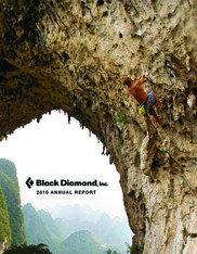 Black Diamond Inc