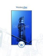Western Gas Equity Partners LP