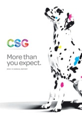 CSG Limited
