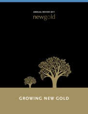 New Gold, Inc.