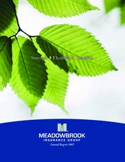 Meadowbrook Insurance Group Inc.